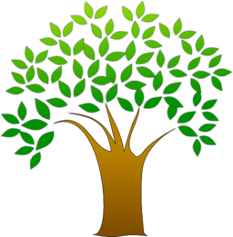 clipart-tree-256x256-2546